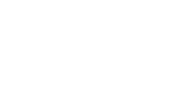 2017IBA Stevie Awards 2개부분 금상 수상